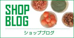 SHOP BLOG 個人のお客様向けショップブログ